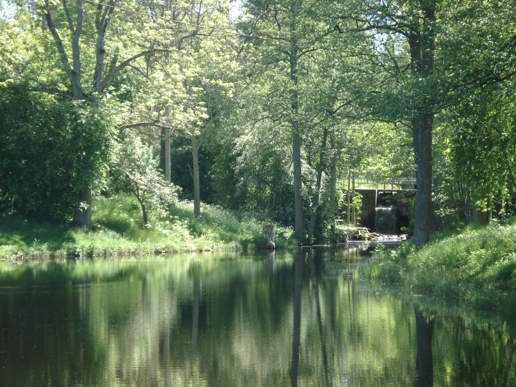 Bremyre 2008. En stillsam, naturskön plats med möjlighet för flugfiske i dammarna.